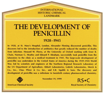 the efficacy of ampicillin in white Organisms and demonstrated greater efficacy to penicillin and penicillin v moreover, it has been found comparable to other antibiotics, eg ampicillin, azithromycin, clarithromycin, cefuroxime and doxycycline in treatment of various infections/ diseases.