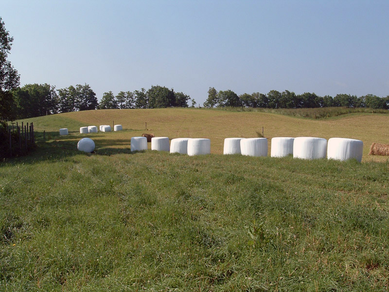 Covered bales