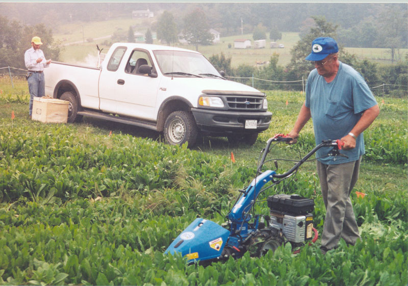 Employees mowing and collecting samples