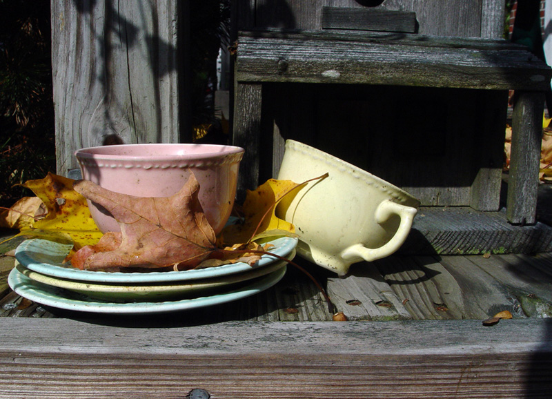 Teacups and autumn leaves