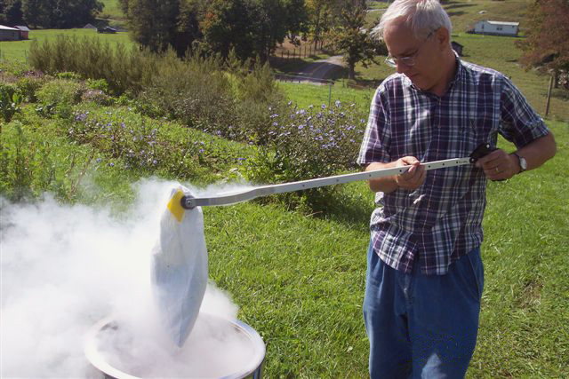 Employee freezes plant samples using liquid nitrogen