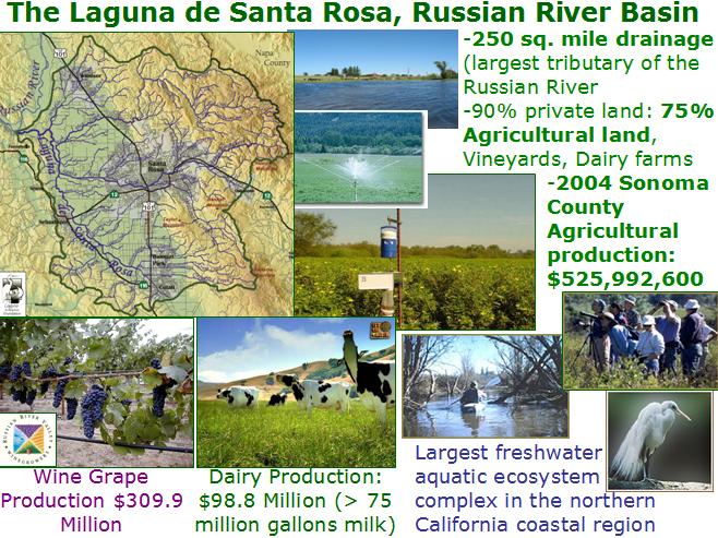 Laguna de Santa Rosa, Russian River Basin