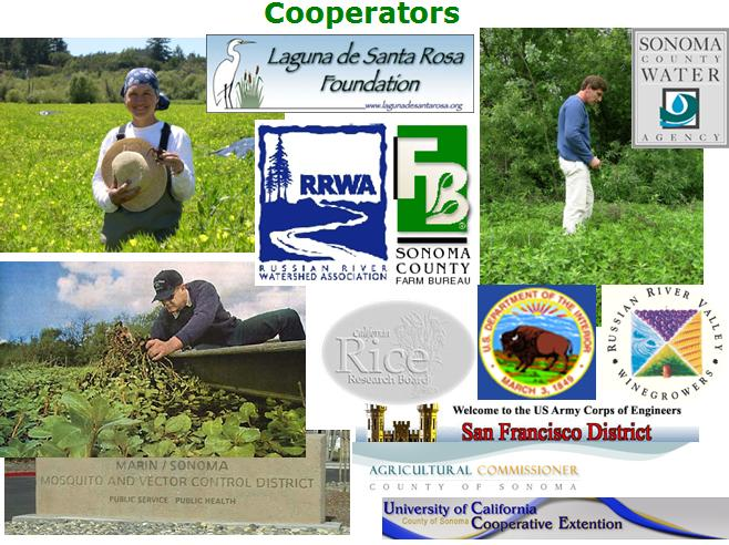 EIWRU Ludwigia project cooperators