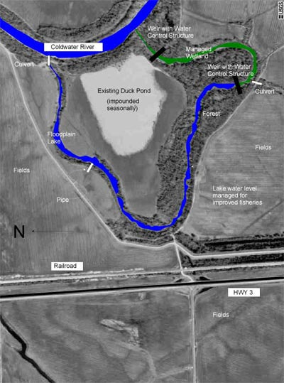 Coldwater River Backwater Restoration Rehabilitation Of