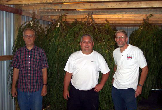 Employees with hanging Artemisia