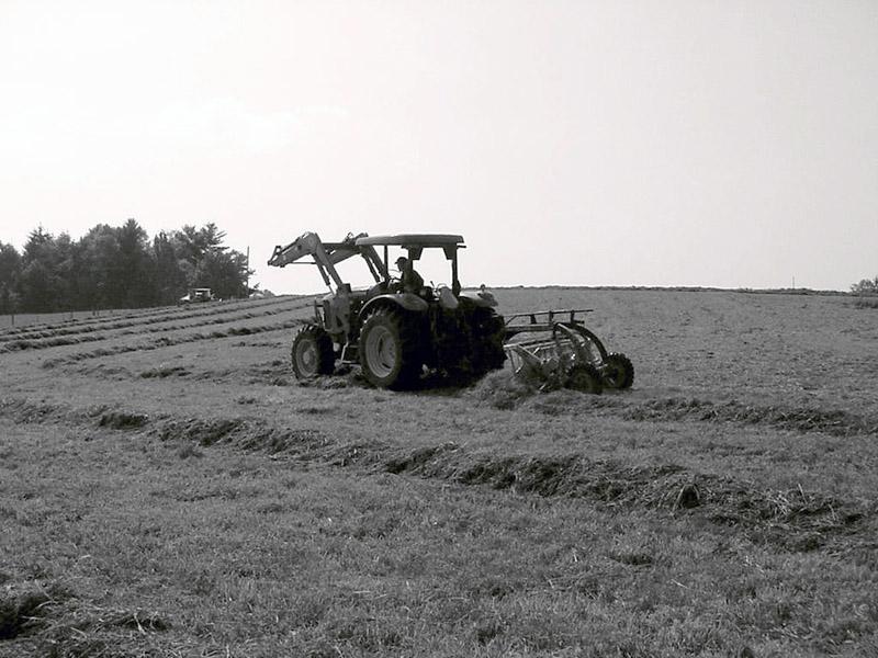 Tractor in field harvesting hay