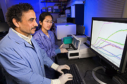 Dr. Arvind Bhagwat and graduate student Ms. Liu examine real time growth measurements of human pathogens in fresh produce wash waters.