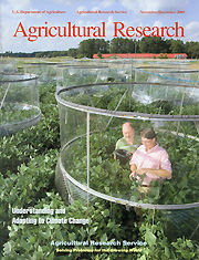 Agricultural Research Nov/Dec 2009 cover story: Soybean and wheat response to climate change