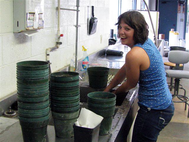 Season employee preparing pots