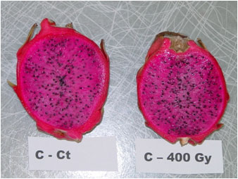 Dragon fruit following irradiation treatment