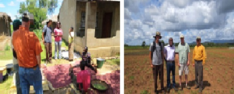 ARS Scientists Phil Miklas and Timothy Porch visit Mozambique and Malawi to explore collaborations for bean research