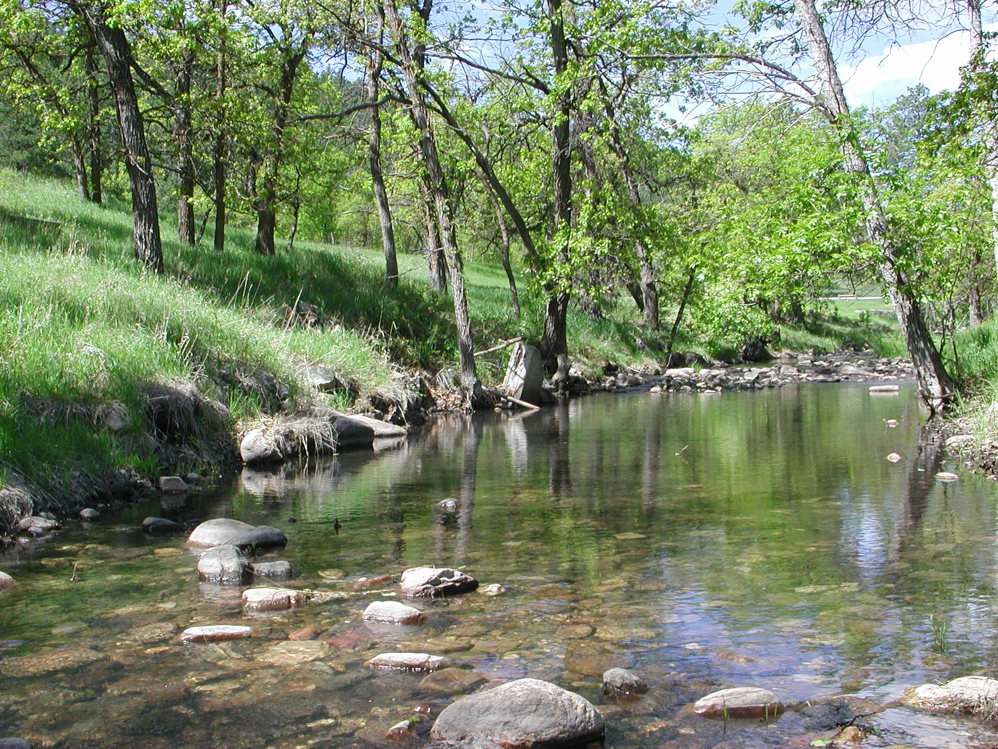Grace Coolidge Creek, SD. Photo: Joyce Williamson, US Geological Survey, US Department of the Interior.