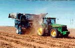 Combining peanuts from windrows