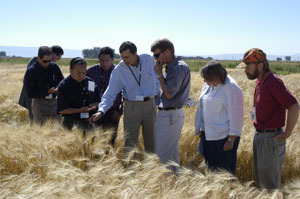 Mexican Malting Barley Trade Team