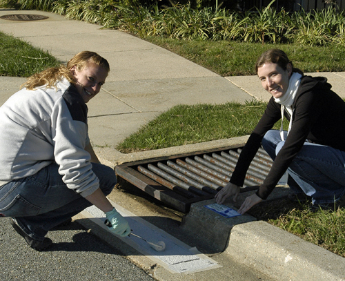 Shannon and Jenny stencilling a BRAC storm drain