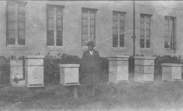 Audubon Hall apiary - 1929