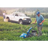Thumbnail of employees mowing and collecting samples
