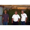 Thumbnail of employees standing with hanging Artemisia