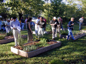 Participants touring medicinal Plants trail and research plots