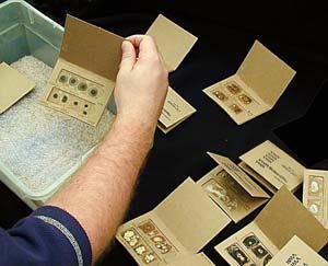 dried voucher specimens