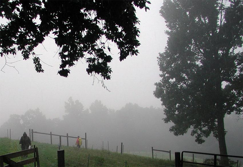 Rain storm in pasture