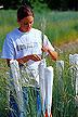 Utah State University student pollinates Snake River wheatgrass
