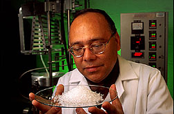 Chemist examines pellets of the sticky extruded material that led to the development of starch adhesive. Link to photo information.