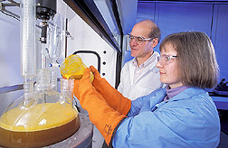 Two ARS scientists prepare soybean-derived soapstock for conversion to biodiesel. Link to photo information