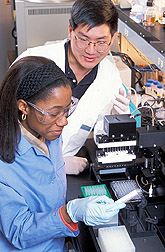 Technician and chemist measure enzyme activity: Click here for full photo caption.