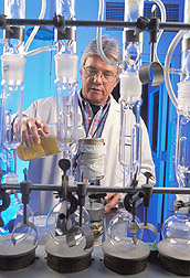 Technician pours guayule resin into a chamber: Click here for full photo caption.