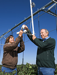 Photo: Two scientists adjusting an infrared thermometer on an irrigation system. Link to photo information