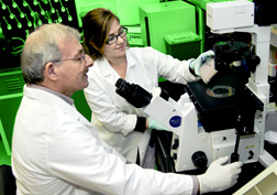 Chemist and visiting scientist examine a plate used in a test to determine the correct amount of a new foot-and-mouth disease vaccine to administer to cattle: Click here for full photo caption.