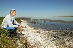 Soil scientist Dennis Corwin on the salt-encrusted edge of an evaporation pond that received drainage water from nearby tile-drained, irrigated land: Click here for photo caption.