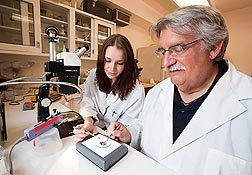 Entomologist Chris Geden and student assistant Rachel Dillard sort stable flies before injecting them with SGHV virus to determine its effects on fly mortality and reproduction: Click here for photo caption.