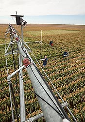 Photo: Two ARS technicians and an ARS scientist adjust sensors connected to a variable rate center pivot irrigation system in a field in Bushland, Texas. Link to photo information