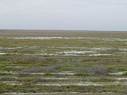 Photo: A field with degraded soil and little vegetation. Link to photo information