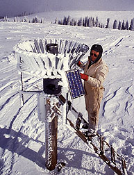 Scientist estimating the volume of water contained in a snowpack. Click here for full photo caption.
