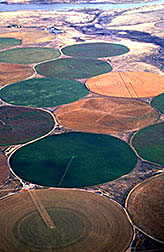 Center-pivot sprinklers controlled by a central computer irrigate wheat, alfalfa, potatoes, and melons in Oregon.