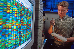 Geneticist Todd Ward uses DNA sequence data to track the global distribution of wheat scab. Link to photo information.