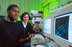 Microbiologist and graduate student observe the display of a confocal microscope being used to examine an alfalfa sprout root. Link to photo information.