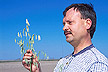Scientist holds new hull-less oat plant: Link to magazine story