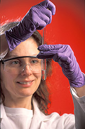 Nutritional biochemist extracts lipids from blood plasma: Click here for full photo caption.