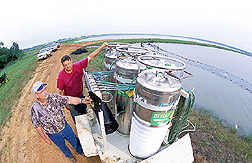 Fish biologist and catfish farmer adjust the flow of liquid oxygen: Click here for full photo caption.