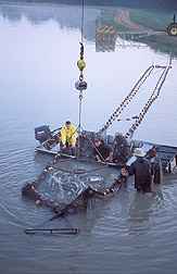 Workers prepare to haul another basket of catfish: Click here for full photo caption.