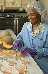 Laboratory support worker prepares cantaloupe samples for sensory evaluation: Click here for full photo caption.