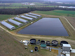 In Duplin County, North Carolina, a full-scale wastewater treatment system (foreground) that replaced the swine lagoon: Click here for photo caption.