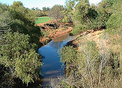 Cobb Creek and its tributaries flow through an agricultural landscape into the Fort Cobb Reservoir: Click here for full photo caption.
