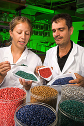ARS biological science aid and University of Arizona scientist examine wheat kernels containing a strain of Aspergillus flavus that acts as a biocontrol agent against strains of A. flavus that produce aflatoxin: Click here for full photo caption.