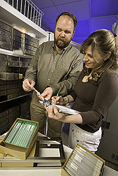 Geneticist and biological technician select bull semen samples for DNA extraction and testing using the SNP50 BeadChip technology: Click here for full photo caption.