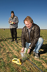 ARS soil scientist (right) and a physical scientist with the U.S. Geological Survey, sample plant biomass and soil nitrogen on a cover crop field in the Choptank River Watershed: Click here for full photo caption.